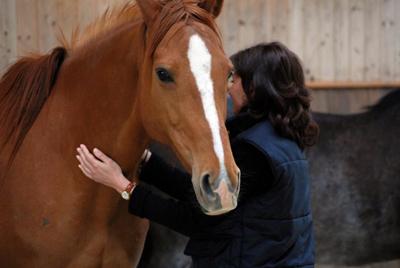 Monique Miserez: Accompagnement par le cheval-Rhône-Alpes
