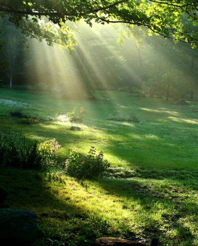 Martine Destandau : Naturopathie-Irrigation du côlon-PACA