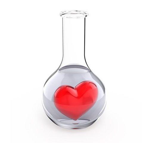 L'amour vu par la science
