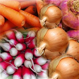 Retour aux racines, la belle histoire des légumes