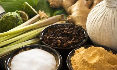Bien-être et médecine douce: Cure Yog'ayurvédique