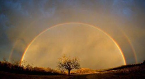 Bien-être et développement personnel: Transcendance et transcendantalisme