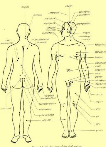 Médecine douce – Marma Thérapie