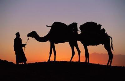 Réveiller ses sens pour retrouver son Essence : voyage Initiatique au Maroc