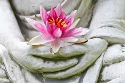 Cultiver le bonheur