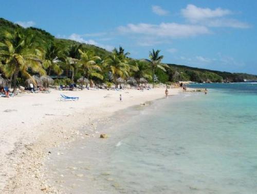 Devenez Coach en Auxiliothérapie en Guadeloupe