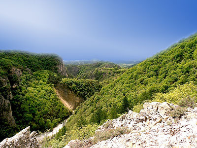 Stage dans la nature-Les sentiers du Bivouac