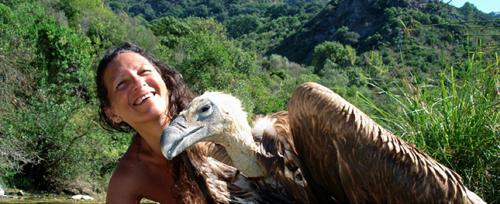 Tantra et chamanisme-Cycle 2 La roue medecine du vautour
