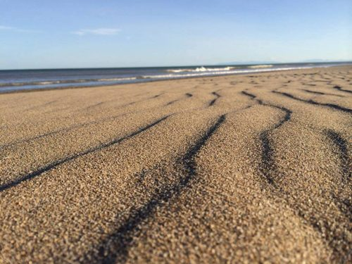 5ème rencontre inter-professionnels du bien-être et thérapeutes sur la plage de Carnon