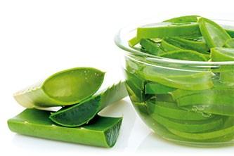 Comment conserver votre beauté, votre santé, votre vitalité avec l'aloe vera ?