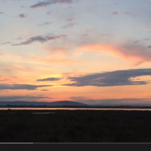Méditation du monde au coucher de soleil