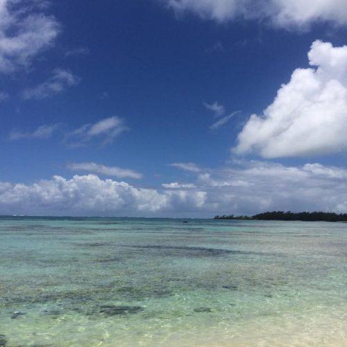 Méditation du monde à Île Maurice avec Neo-bienêtre