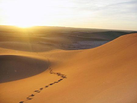 Voyage initiatique dans le silence du désert