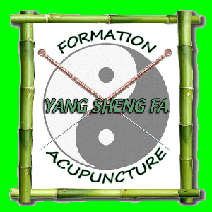 Écoles de Médecine Traditionnelle Chinoise Yang Sheng Fa Acupuncture