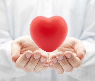 Le langage du cœur et les randonnées des 4 saisons