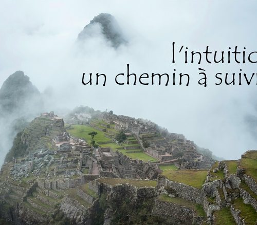Comprendre l'intuition