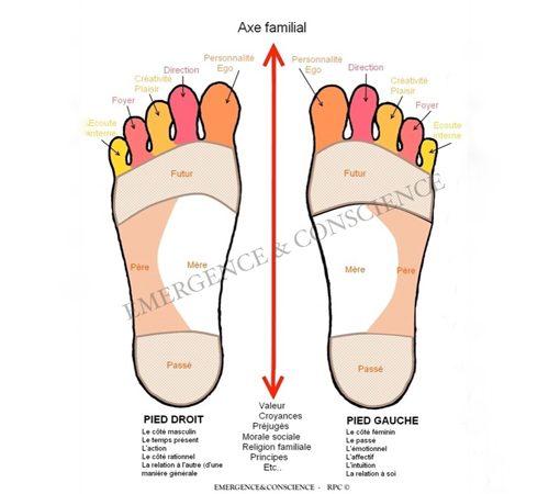 La lecture Pyscho-Emotionnelle des pieds