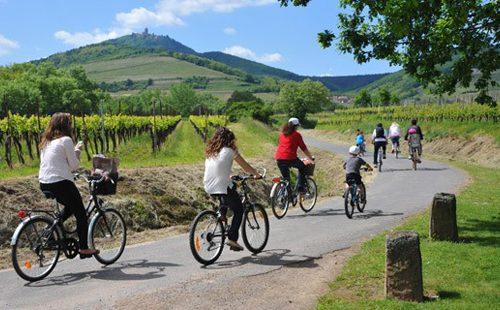 La Route des Vins d'Alsace, vélo, yoga et méditation du 13 au 20 août 2016