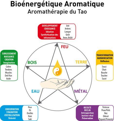 Rencontre autour de la bio aromathérapie