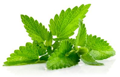 Les huiles essentielles : un apaisant contre les maux de tête