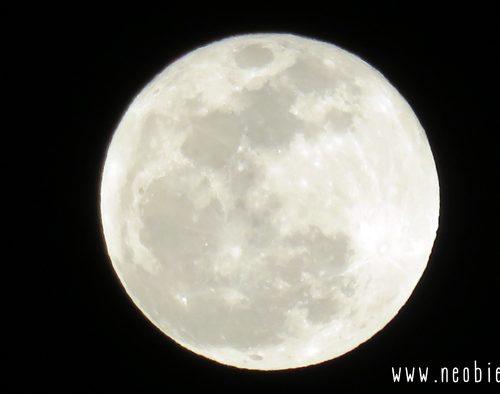 Pleine lune le 25 novembre