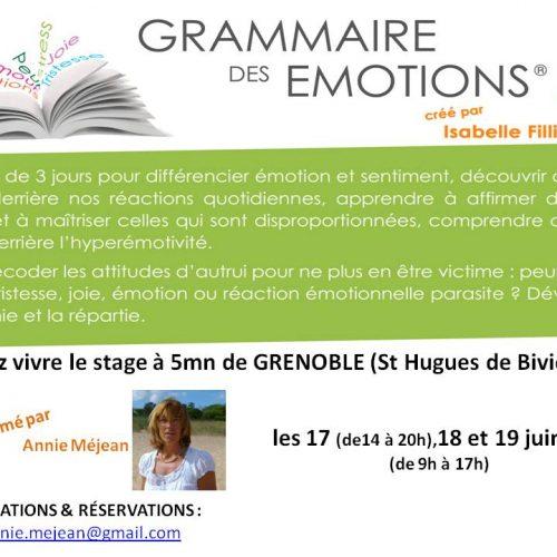 Stage grammaire des émotions crée par Isabelle FILLIOZAT à Grenoble