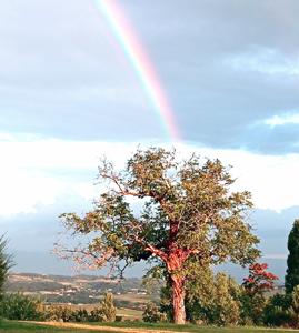 École Méditerranéenne du Massage et de l'Écoute dans la Drôme
