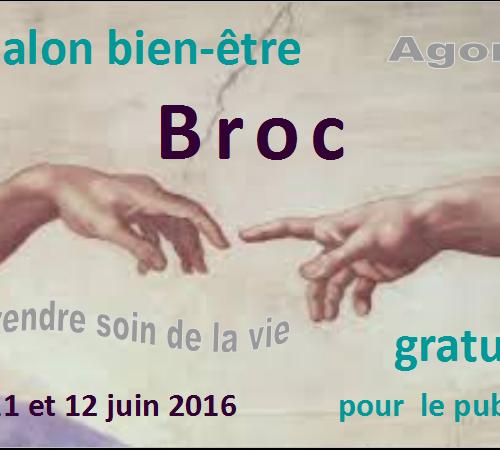 """Salon bien-être agora """"Prendre soin de la vie"""" les 11 et 12 juin 2016, à Broc"""