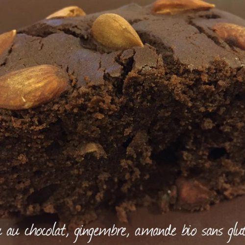 Gâteau au chocolat, gingembre et amande bio sans gluten