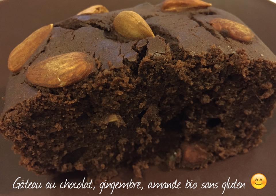Gateau_au_chocolat_gingembre_et_amande_bio_sans_gluten