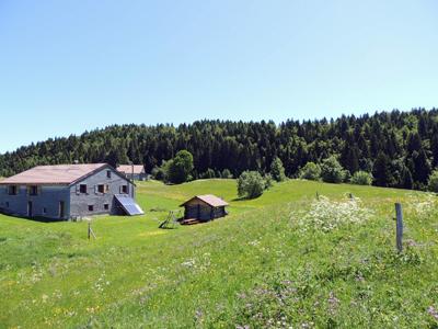 Centre Nature Divine, Week-end bien-être et séjours ressourcement dans le Haut-Jura à La Pesse