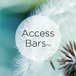 Formation Access Bars – Dax