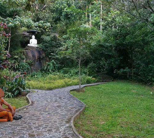 31 janvier au 17 février 2018 : Voyage culturel & spirituel avec retraite de méditation au Sri Lanka