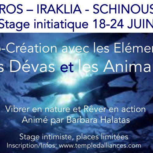 Stage initiatique dans les Cyclades en Grèce