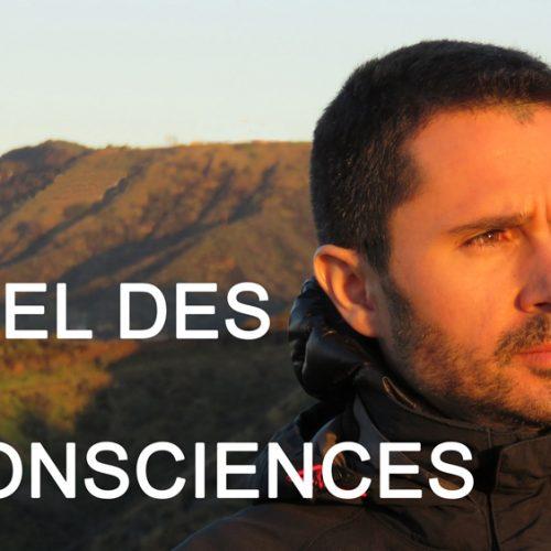 L'éveil des consciences avec Julien Peron