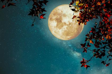 Nouvelle Lune du 18 Novembre 2017 : L'éveil des consciences