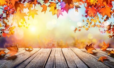 Novembre 2017 : Un mois hautement spirituel
