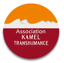 Association Kamel Transhumance, un tourisme solidaire et équitable pour visiter le désert tunisien