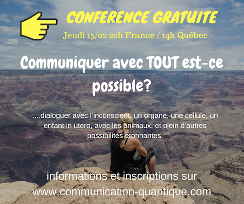 Webconf Communication Quantique, dialoguer avec TOUT est-ce possible ?
