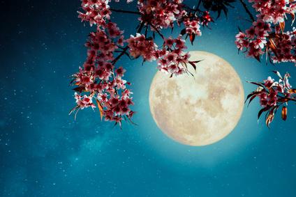 Nouvelle lune du 16 avril 2018 : C'est l'heure du renouveau !
