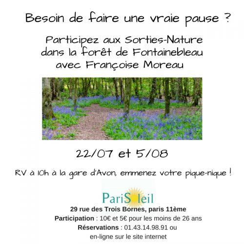 Sortie nature dans la forêt de Fontainebleau