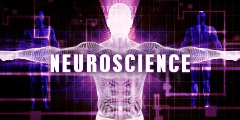 Maîtriser notre poids : les neurosciences à notre secours !