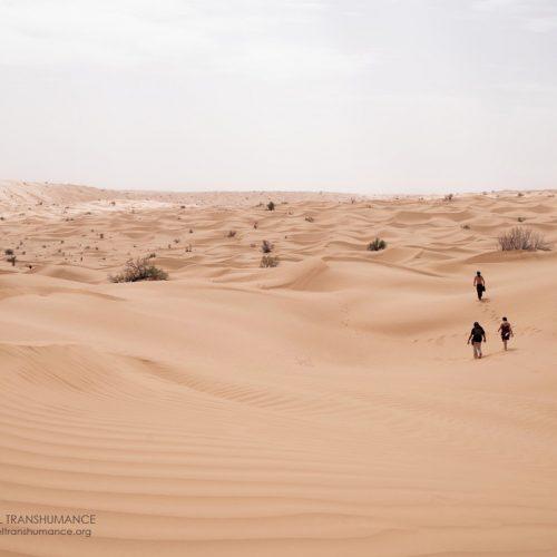 Stage en immersion dans le désert tunisien du «Work» de Byron Katie