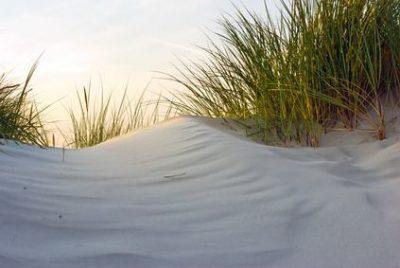 Retraite semi-silencieuse – Plonger au cœur de sa vraie nature