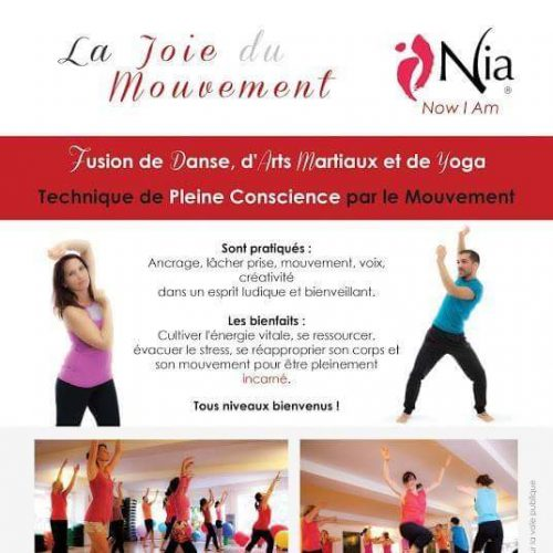 Stages de Nia technique avec Magali Romano
