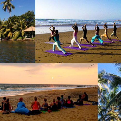 8 au 21 mars 2020 : Séjour culturel avec méditation, yoga et ressourcement au Sri Lanka