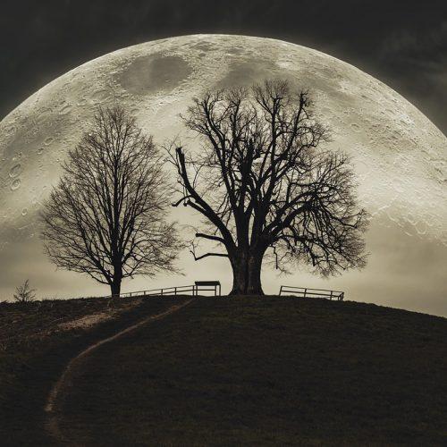 Pleine Lune du 31 octobre 2020 : Une Lune Bleue pour Halloween !