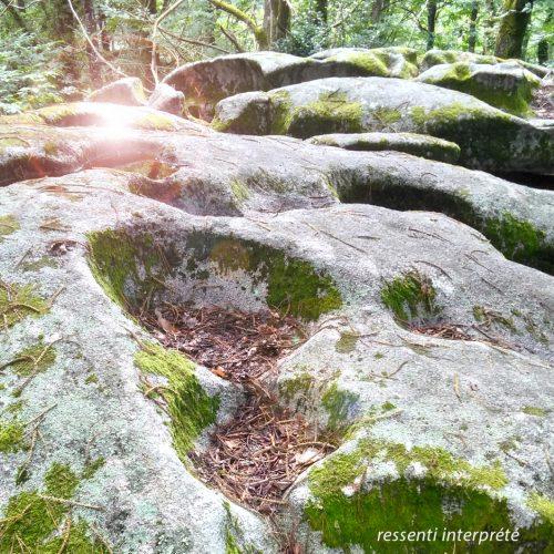 Formation Éveil au rayonnement du corps de cristal – Dijon (21)