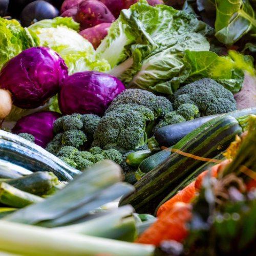 Top 10 des aliments riches en protéines