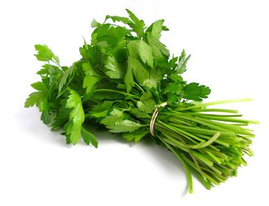 LA CORIANDRE – Une herbe aromatique généreuse et thérapeutique.